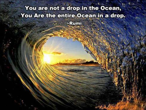 rumi you are the ocean in an entire drop